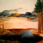 Durer 150x150 История техники акварели